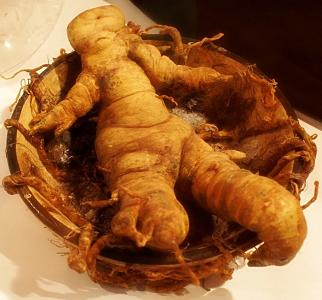Mandrágora: Planta de brujas por excelencia